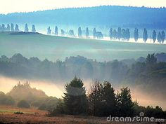 Morning mist over landscape of Bohemian forest in central Europe