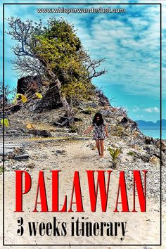 Palawan, Philippines   3 weeks itinerary   best island in the world   Puerto Princesa   El Nido   Coron   San Vicente   Palawan   Philippines   SE Asia
