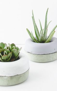 These two-dollar DIY planters look like a million bucks, don't they? #DIY…