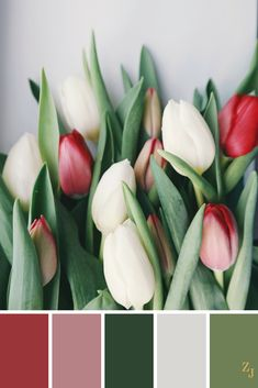 ZJ Colour Palette 344 #colourpalette #colourinspiration