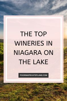 What is there to do in Niagara on the Lake today? Well why not go wine tasting. Home to amazing vineyards and wineries spend the day sampling the many varietals Niagara on the Lake has to offer. Tesla Charging Stations, Cheap Places To Visit, Peach Wine, Heatless Waves, Niagara Region, Private Plane, Wine And Beer, Wineries, Lake View