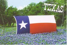 Texas Flag in Bluebonnet Field