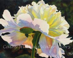 White Peony art watercolor print by Cathy Hillegas, 8x10, watercolor peony, watercolor print, white pink, yellow, blue, red, green, fine art