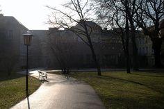 Lauder Business School Campus International School, Business School, Vienna, Sidewalk, University, Side Walkway, Walkway, Community College, Walkways