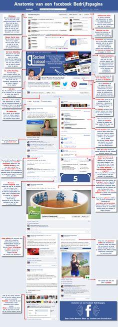 Deze infographic geeft een goed beeld van alle onderwerpen op een facebook bedrijfspagina.