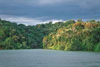 Las aguas y bosques que rodean la Bahía de Málaga representan valores naturales que deben ser conservados.