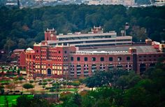 Doak Campbell Stadium - Florida State University, Florida | 21 College Campuses That Make You Feel Like You're At Hogwarts