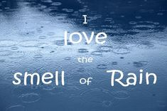 Discover and share Rainy Day Quotes And Sayings. Explore our collection of motivational and famous quotes by authors you know and love. Sound Of Rain, Singing In The Rain, Sound Sound, Rainy Night, Rainy Days, Rainy Day Quotes, Smell Of Rain, I Love Rain, Cherbourg