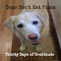 Who's with me? Thirty Days of Gratitude, starting a little early: Getting a Jump on the Gratitude - Dogs Don't Eat Pizza