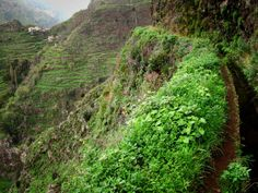 Madeira: Levada do Norte Funchal, Portugal, Dangerous Roads, Paragliding, Beach Pool, Island Life, Places To Go, Surfing, Hiking