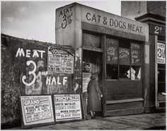 Cat and Dogs Meat shop on Clarendon Street, Paddington (1935)