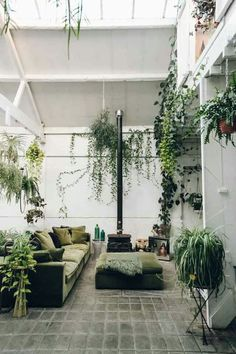 Inside Clapton Tram - a Plant-Filled Warehouse Space