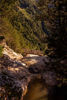 Le Pas du Roc in Thorens Glières is a beautiful and easy walk for the all family, One only spot needs you attention but the rest is feasible for all. Organic Restaurant, Basque Country, Crystal Clear Water, All Family, Yoga Retreat, Horseback Riding, Greece, Country Roads, Island