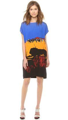 """Diane von Furstenberg Harriet Print Dress--or, """"The Veldt"""" dress"""
