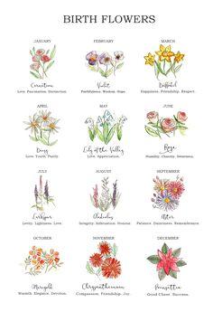 February Birth Flowers, July Birth Flower, Birth Month Flowers, December Flower Tattoo, November Flower, Aster Flower Tattoos, Daffodil Tattoo, Birth Flower Tattoos, Dainty Flower Tattoos
