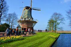 Welcome Mrs. Spring! ^.^  #spring #equinox #travel #travels Picture: Visit Keukenhof around #Amsterdam #Holland #Netherlands   ¡Bienvenida Srta. Primavera! ^.^  #primavera #equinoccio #viaje #viajes  Fotografía: Jardines de Keukenhof cerca de Ámsterdam #Holanda #PaisesBajos