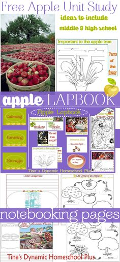 Free Apple Lapbook & Unit for Fall Homeschooling Unit Study. Ideas to include your middleschool kids along with your younger kids @ Tiina's Dynamic Homeschool Plus