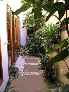 Jardim interno : Jardins de inverno tropicais por Metamorfose Arquitetura e Urbanismo