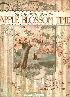 apple blossom time <3