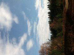 A calm day in Traverse City, MI :)