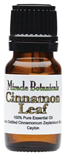 Cinnamon Leaf essential oil is a powerful antiseptic and has been considered useful with infections including coughs colds and viral infections. Cinnamon Leaf is excellent in a diffusor as it will ...
