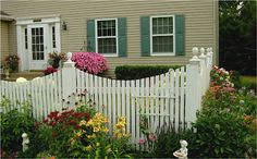 Picket fence in our front yard....(Nancy Malay)