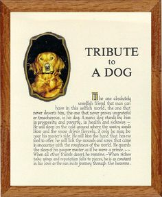 Pet Frames from Mt.Edge - Dog Pet Frames - Tribute to a Dog I Love Dogs, Cute Dogs, Selfish World, Death Quotes, Man And Dog, Pet Loss, Love You More Than, Animal Quotes, My Best Friend
