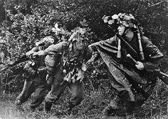 Deutscher Infanteristen ziehen einPak-Geschütz aus dem Unterholz inKampfstellung- Juli 1944Fotograf: Hilmar Pabel - pin by Paolo Marzioli