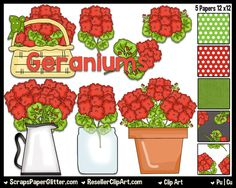 Geranium Love Clip Art - Commercial Use, Digital Image, Clipart - Instant Download - BONUS Papers - Flowers, Prim, Rustic, Red, Mason Jar by ResellerClipArt on Etsy