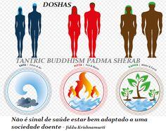 Terapia Budismo Tibetano Padma Sherab: Doshas