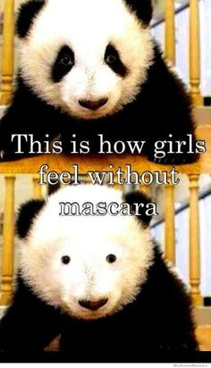 Accurate. Hahaha