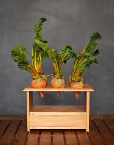 beetbox - a musical instrument powered by vegetables by scott garner