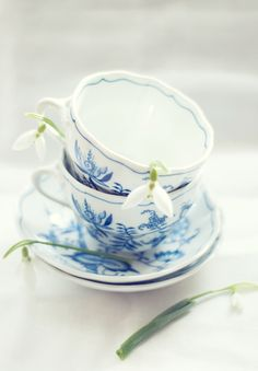 cups and snowdrops