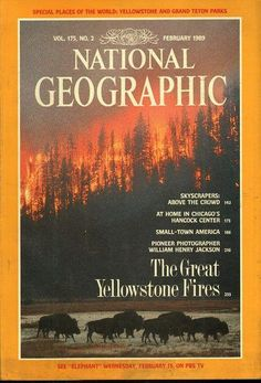 Items similar to Vintage National Geographic February 1989 - Great Yellowstone Fires New Condition! on Etsy Magazine Wall, Time Magazine, Magazine Covers, National Geographic Cover, Henry Jackson, Small Town America, Science Articles, Chicago Fire, Firefighters