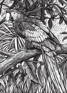 Creative Haven Woodcut Designs Coloring Book:  Welcome to Dover Publications