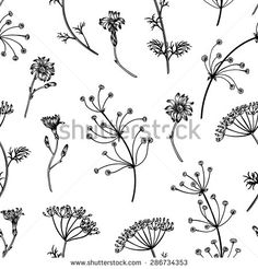 Plants Stock Photos, Images, & Pictures | Shutterstock