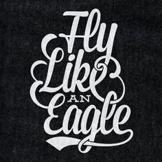 fly like an eagle #teamfollowback