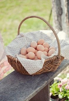 One of the most important reasons why people keep chickens is to have a regular supply of delicious farm fresh eggs. Country Charm, Country Farmhouse, Country Life, Country Girls, Country Living, Country Style, Country Roads, Farmhouse Bed, Rustic Charm