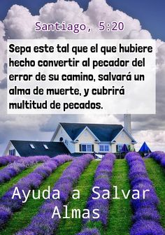 NO SOLO COMPARTAS LA PALABRA DE DIOS, VIVELO Y EXHORTA A TU PROJIMO.🍃  Santiago, 5:20 - sepa este tal que el que hubiere hecho convertir a...