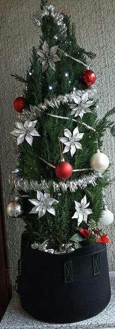 Koristele sypressi parvekkeelle joulupuuksi. #jouluparveke