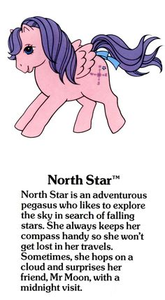 My Little Pony North Star fact file ...