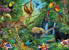 Afbeeldingsresultaat voor jungle