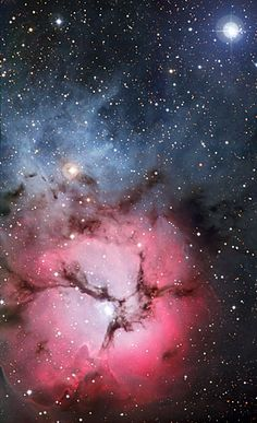 The massive star factory known as the Trifid Nebula was captured in all its glory with the Wide-Field Imager camera attached to the MPG/ESO 2.2-metre telescope at ESO's La Silla Observatory in northern Chile. So named for the dark dust bands that trisect its glowing heart, the Trifid Nebula is a rare combination of three nebulae types that reveal the fury of freshly formed stars and point to more star birth in the future. The field of view of the image is approximately 13 x 17 arcminutes.