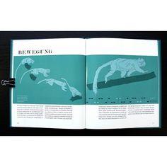 The walk. . . . . . #book #print #editorial #illustration #artsy #design #green #tamarin #monkey...