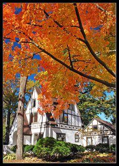 Autumn in Ann Arbor, Michigan