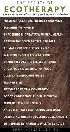 Ecotherapy is a great way to use nature to help reduce stress, anxiety and depression. It's perfect for moms with perinatal mood and anxiety disorders. Gentle Parenting, Parenting Advice, Anxiety Disorder, Coping Skills, Reduce Stress, Working Moms, Way Of Life, Mental Health, Health Anxiety