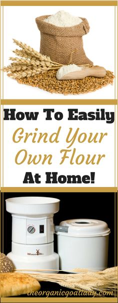 How To Easily Grind Your Own Flours At Home!