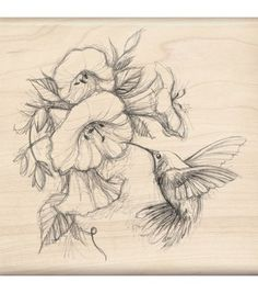 Inkadinkado Rubber Stamp-Hummingbird With Flowers this would make a beautiful tat! Bird Drawings, Tattoo Drawings, Pencil Drawings, 1 Tattoo, Lion Tattoo, Tattoo Shop, Tattoo Flash, Hummingbird Tattoo, Hummingbird Drawing
