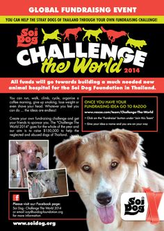 Soi Dog Foundation is organizing a global fundraising event this year, to run throughout the whole of 2014. All money raised will make a difference. Please check out our Facebook page: https://www.facebook.com/pages/Soi-Dog-Challenge-The-World-2014/161398244053062