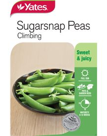Both pea and pod are sweet, juicy and flavoursome, and can be eaten whole when young or shelled when mature. Sugar Snap Peas, Vegetable Garden, Green Beans, Climbing, Seeds, Vegetables, Gardening, Food, Vegetables Garden